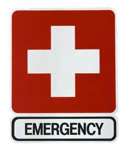 emergencies Ahwatukee Animal Care Hospital