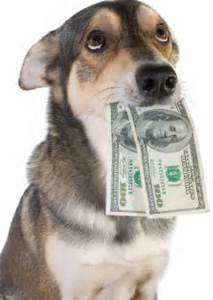 payment policy Ahwatukee Animal Care Hospital