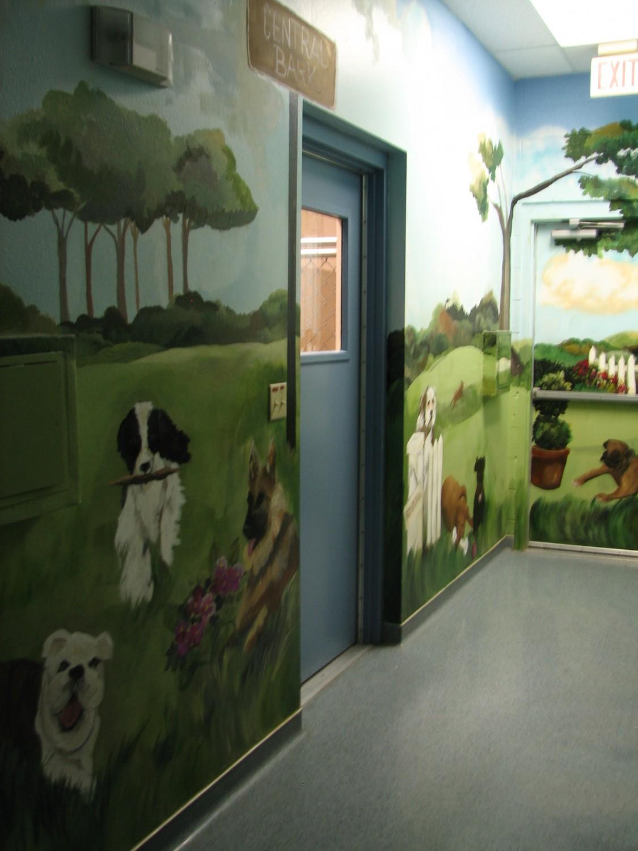 Pet Boarding at Ajwatukee Animal Care Hospital