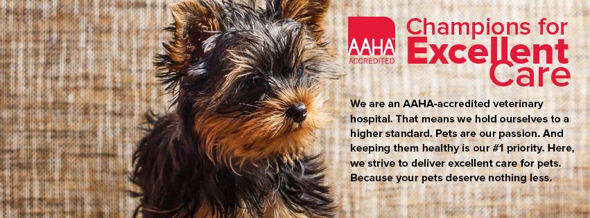 Ahwatukee Animal Care Hospital is AAHA accredited