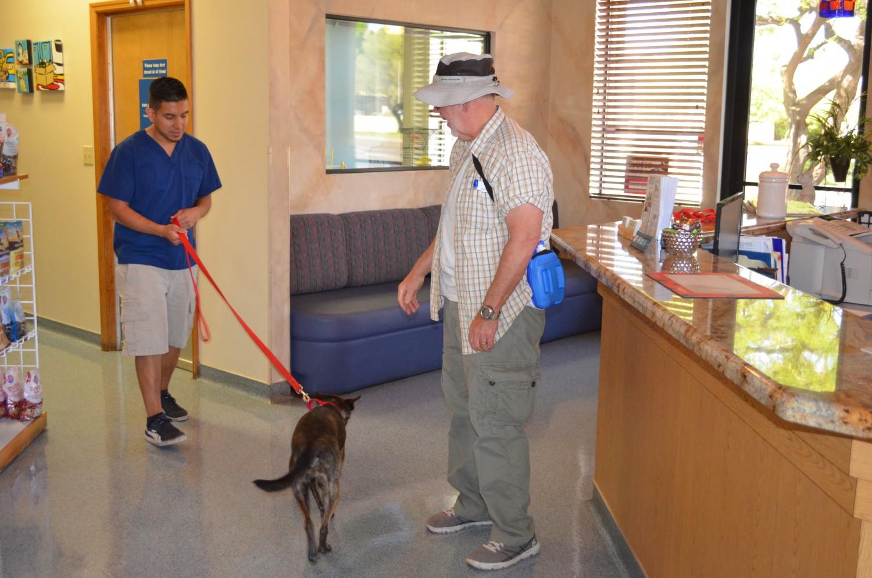 Ahwatukee Animal Care Hospital Reception