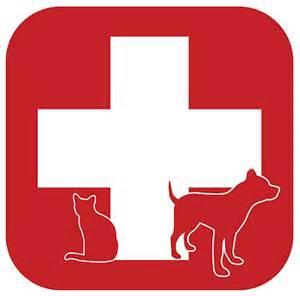 choking -pet first aid - Ahwatukee Animal Care Hospital